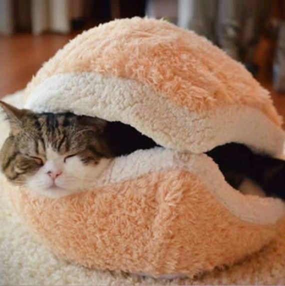 Cat Hamburger Bed