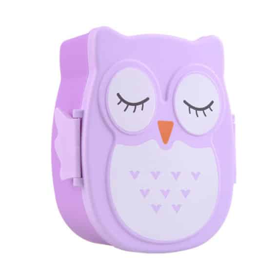 Cartoon Owl Lunchbox