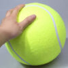 Inflatable Ball for Dogs
