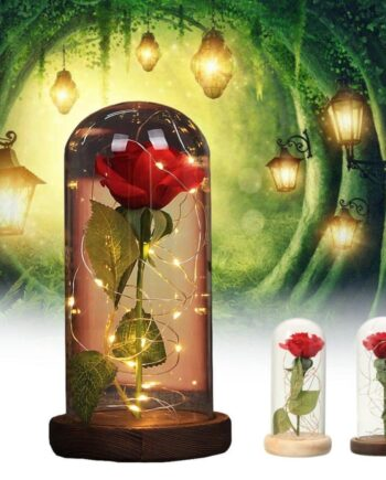 Romantic Magic Rose LED Desk Lamp