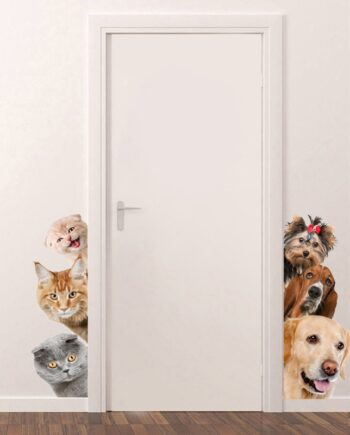 Dogs Cats 3D Wall Sticker Funny